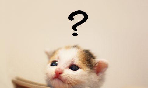 あれ?おしっこが赤い~猫の血尿から考えられる病気~001