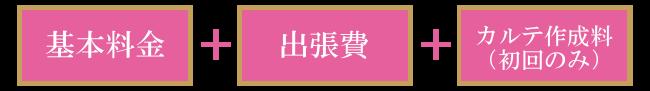東京都江東区 豊洲 辰巳 東雲 キャットシッター ペットシッター ゆるねこ 料金プラン例